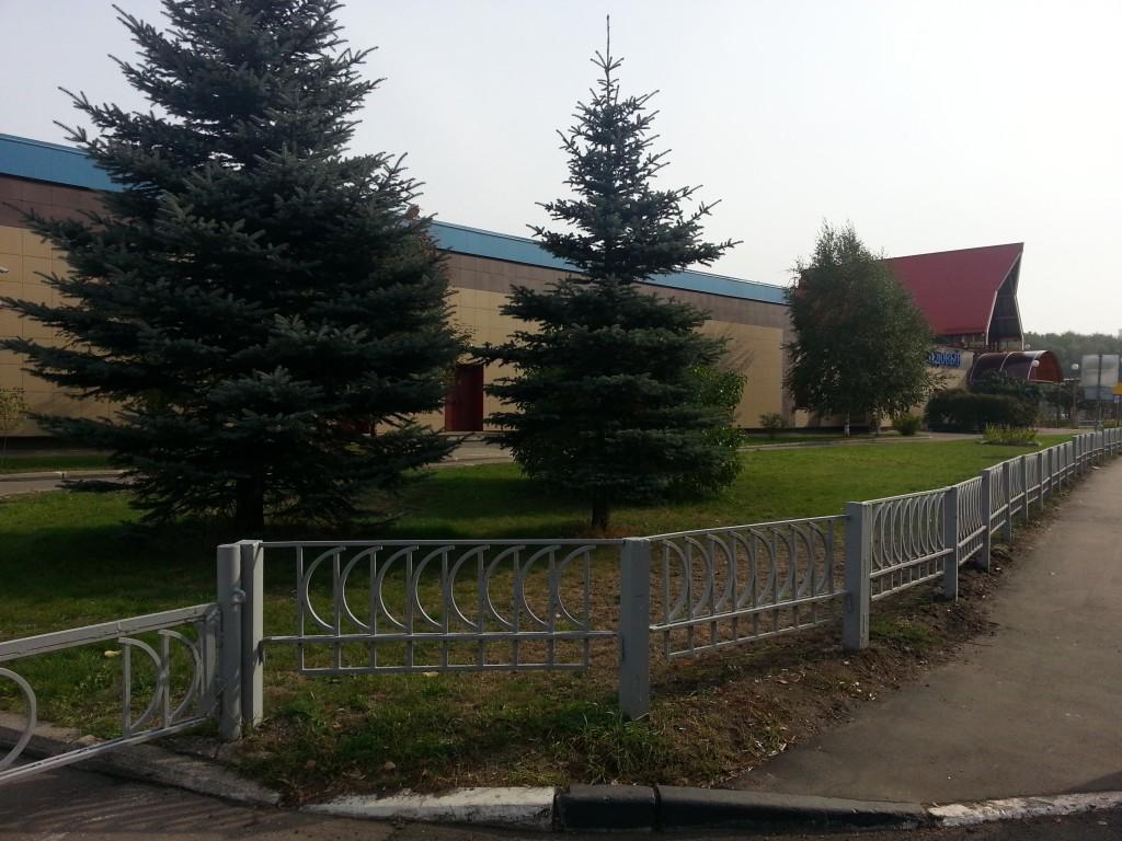 Спортивная школа 7 в Солнцево