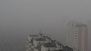 Москвичей погода порадовала хорошим снегом