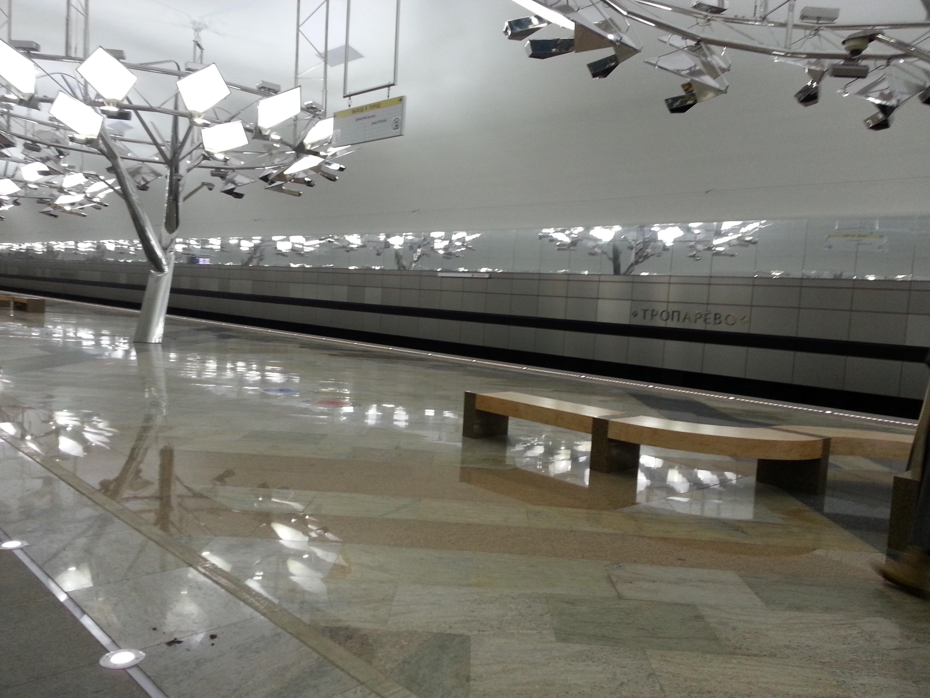 град Московский мерто Тропарёво
